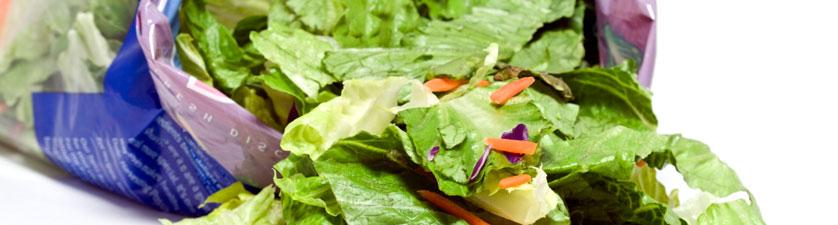 MAP Lettuce