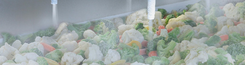 Freezing and Chilling Produce